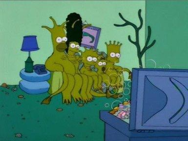 Scimmie di mare Simpson