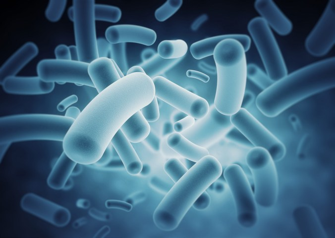 The Microbiome and Inflammatory Bowel Disease
