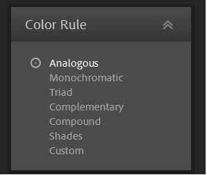 Color rule