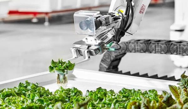 Iron Ox raises $20 million to grow robotic greenhouse operations