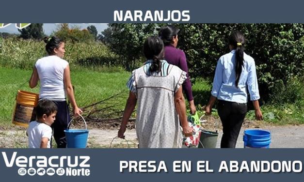 PRESA EN EL ABANDONO MIENTRAS LAS TEMPERATURAS SUBEN