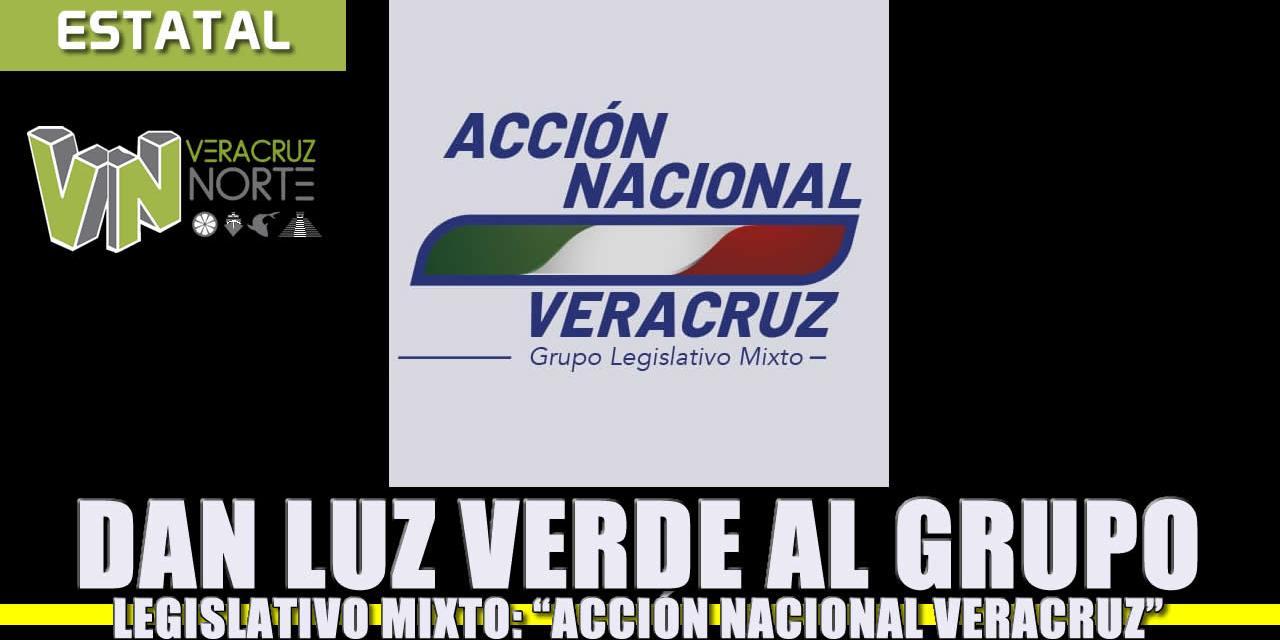 """Dan luz verde al grupo legislativo mixto """"Acción Nacional Veracruz"""""""