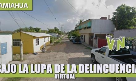 BAJO LA LUPA DE LA DELINCUENCIA VIRTUAL