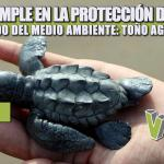 TUXPAN CUMPLE EN LA PROTECCIÓN DE ESPECIES Y CUIDADO DEL MEDIO AMBIENTE: TOÑO AGUILAR