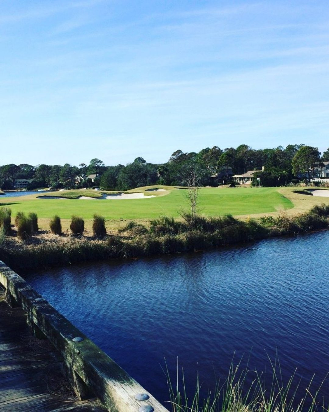 Palmetto Golf