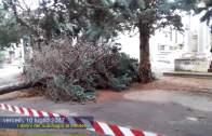 Cimitero di Vercelli: i danni del nubifragio