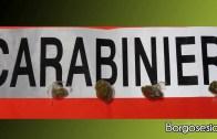 Borgosesia: denunciato per detenzione di sostanze stupefacenti