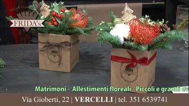 FRIDA'S – Vercelli, via Gioberti 22