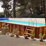 Acces bassin par echelle exterieure en bois