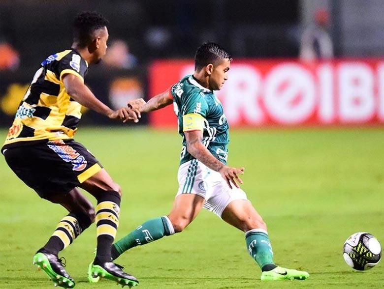 Palmeiras 3x0 Novorizontino
