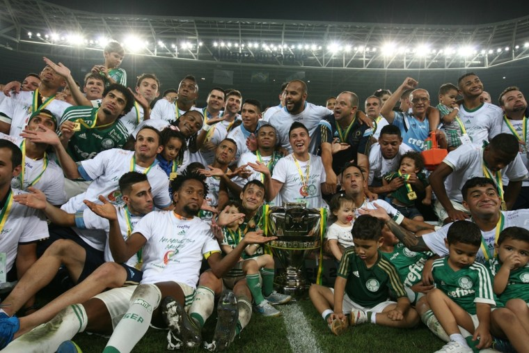 Campeão Copa do Brasil 2015