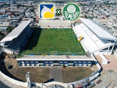 Pré-jogo Delfín x Palmeiras