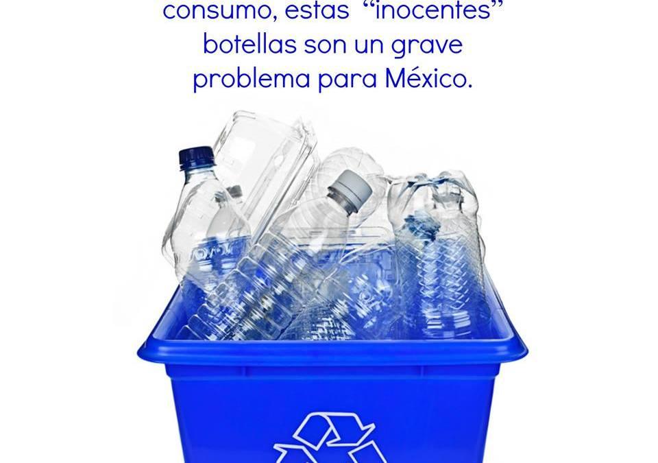 Cómo reciclar botellas PET