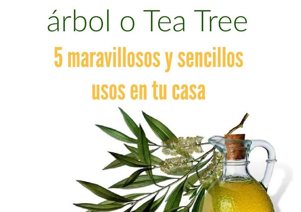 5 maravillosos y sencillos usos del aceite de tea tree