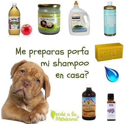 Prepara shampoo para tu perro
