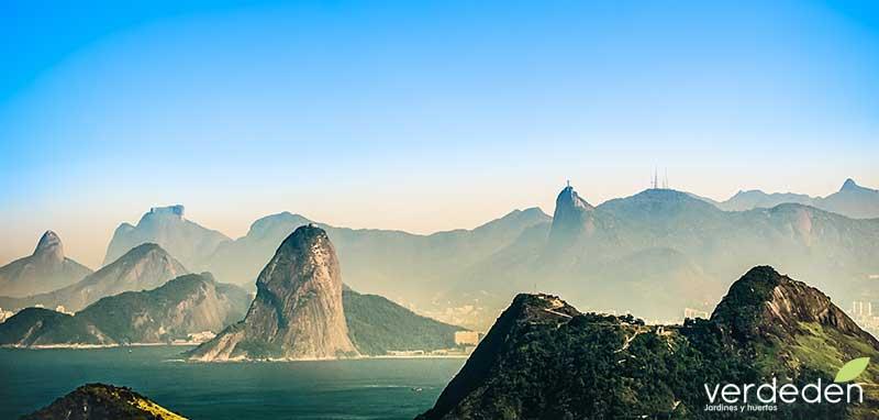 Rio de Janeiro: paisaje patrimonio mundial UNESCO: importancia del paisaje en el medio ambiente