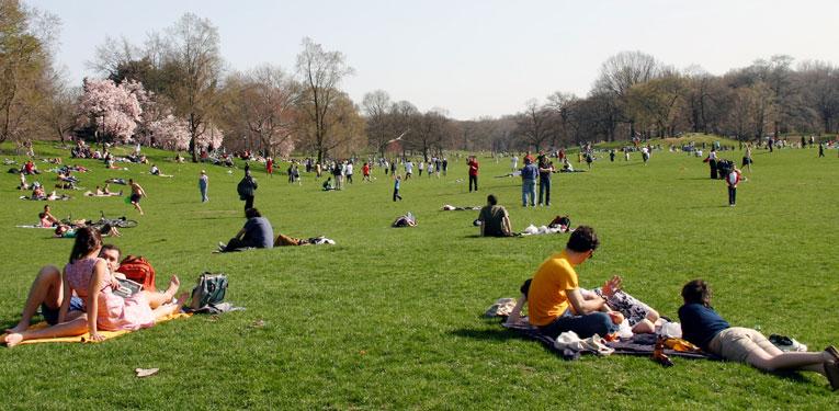 Project for Public Spaces : Parque