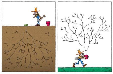 Humor y jardinería - Raíz como árbol