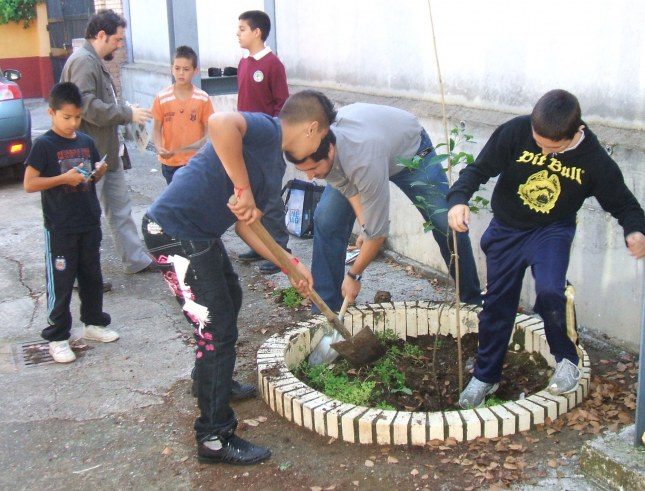 Actividades de la asociación de jardines de la oliva