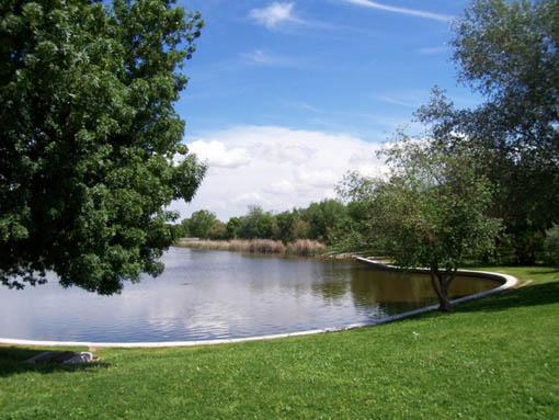 Fundacíon Naturalia XXI: Parque del Alamillo