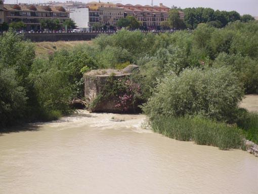 Molino de Enmedio-Guadalquivir