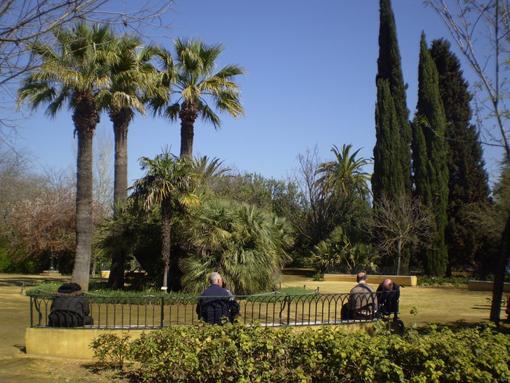 Jardín botánico El Arboreto_Sevilla