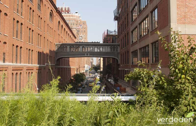 Highline12_paisajismo
