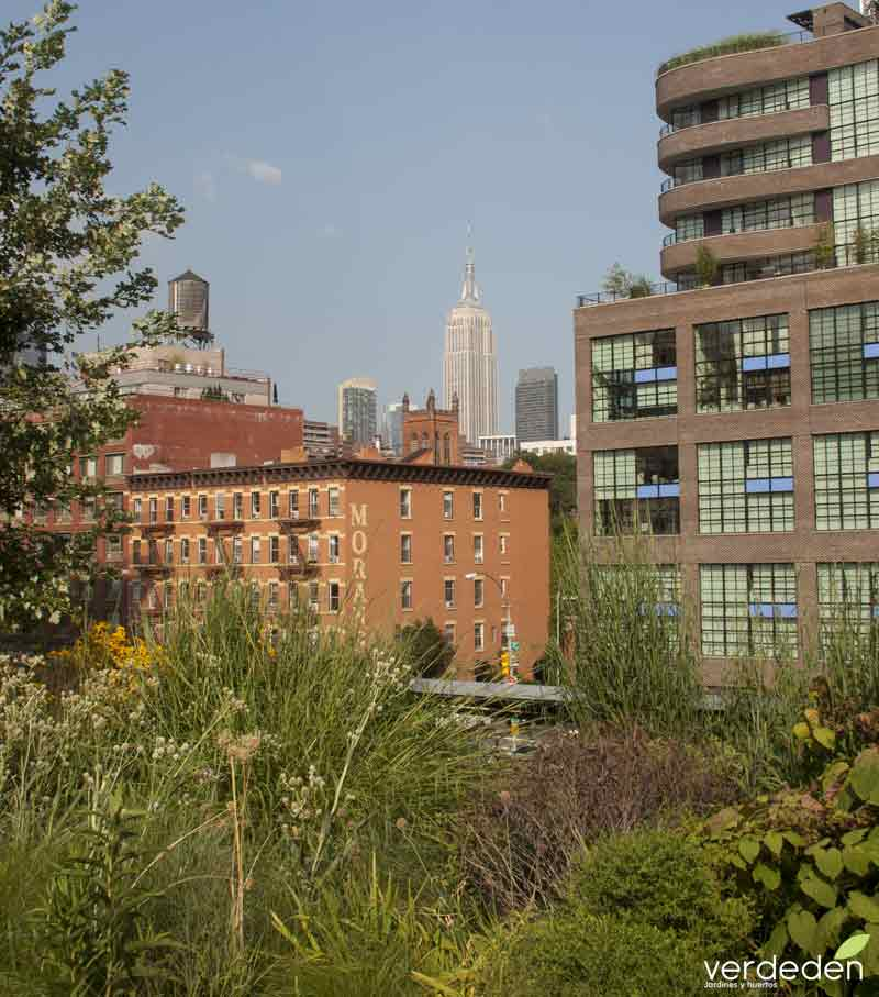 Empire State building desde Highline