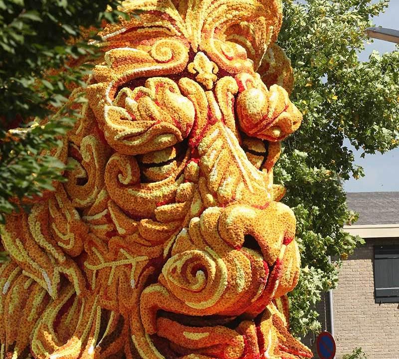 León hecho de Dalias (Werner Pellis)