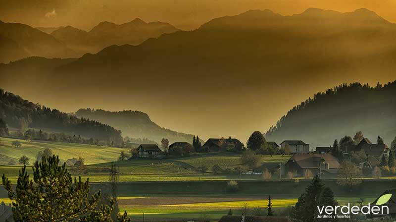 paisaje de campo en otoño