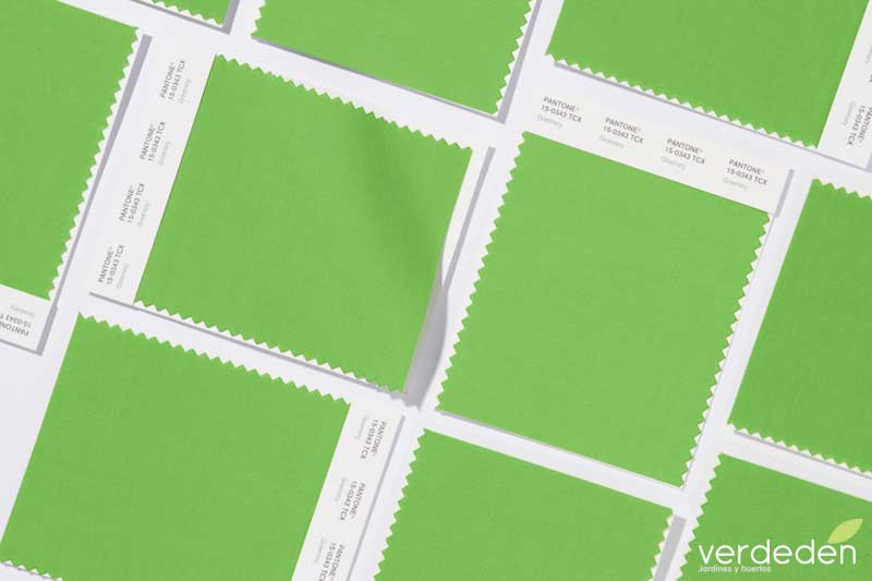 COLOR DEL AÑO 2017 greenery PANTONE