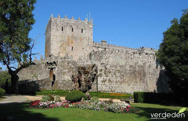 Castillo de Soutomaior _ Ruta de la Camelia