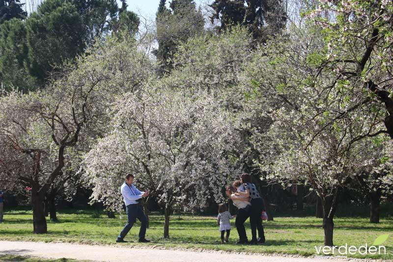 Quinta los molinos- Foto de familia con los almendros en flor