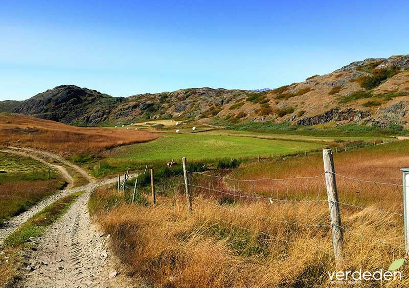 paisaje agrícola subartico de Kujataa en Groenlandia