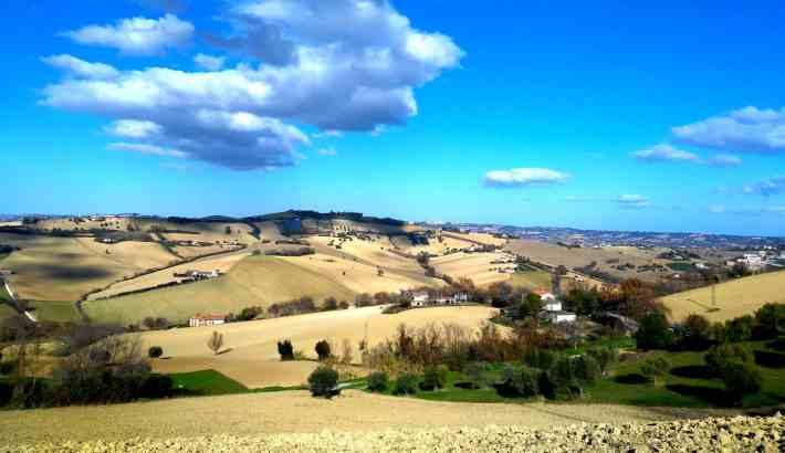 vista colline marchigiane