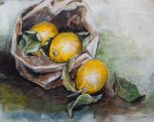 Zitronen, Acryl auf Acrylpapier, 50x40cm