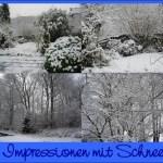 Impressionen mit Schnee