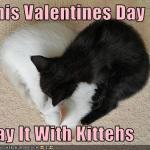 Valentinstag ♥