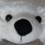 Meine 'ALS Eisbären-Challenge'!