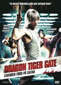 Dragon Tiger Gate (2006) DVD-Rip Latino