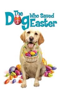 El perro que salvo la Pascua