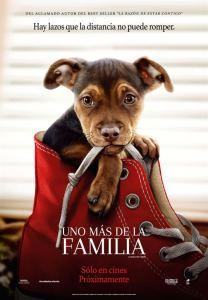Uno más de la familia (2019) HD 1080p Latino