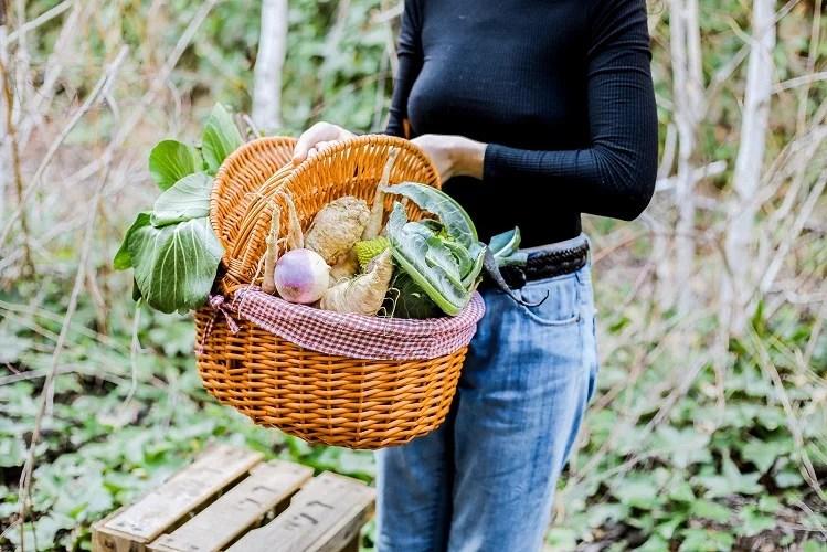Guia per estalviar menjant ecològic - Consells - Veritas