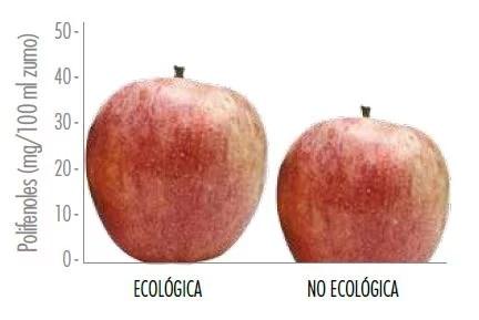 Polifenoles en las manzanas - Estudios - Veritas