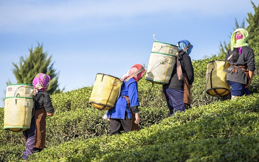 An Ethical Framework for International Labor Recruitment