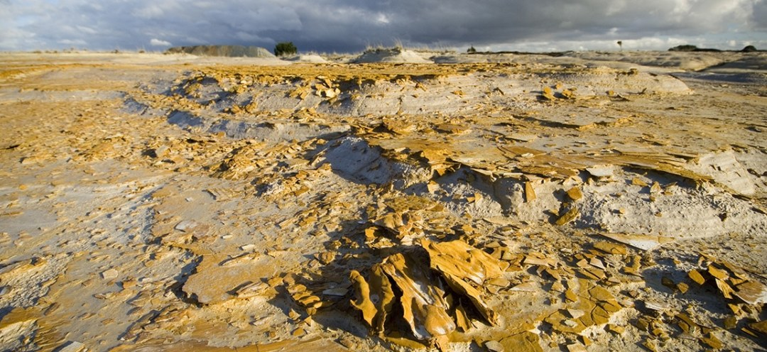 A barren landscape shows the aftermath of gold mining
