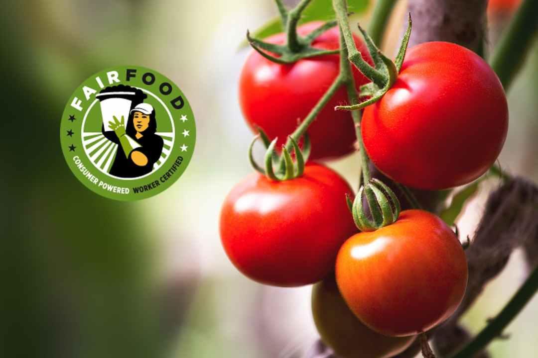 CIW Fair Food Initiative