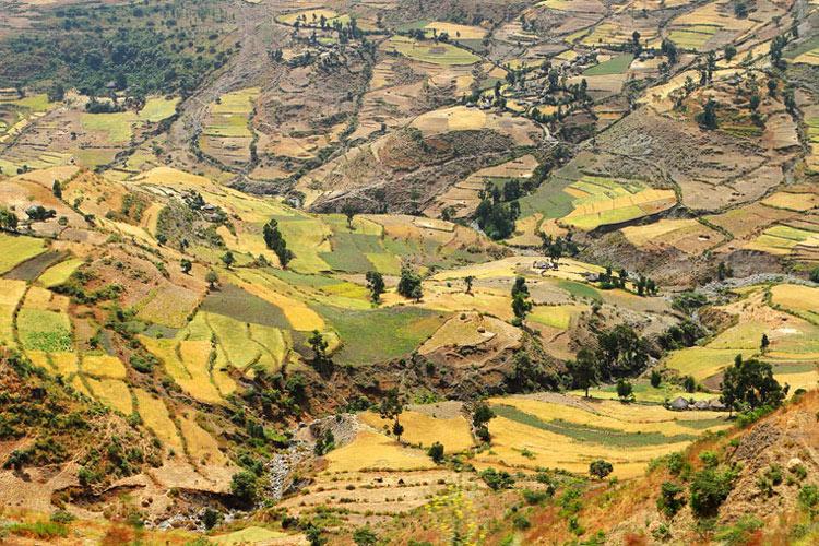 An aerial view of hillside farmland