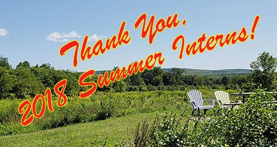 Thank You, 2018 Summer Interns! - Verité