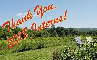 Thank You, 2018 Summer Interns!